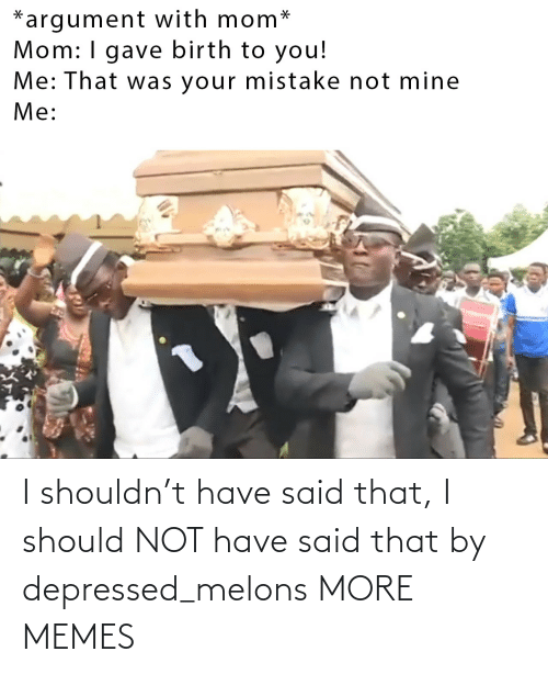 I Should: I shouldn't have said that, I should NOT have said that by depressed_melons MORE MEMES