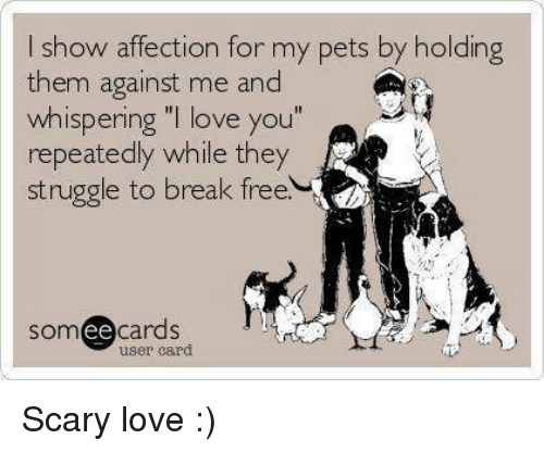 "Memes, Affect, and 🤖: I show affection for my pets by holding  them against me and  whispering ""I love you""  repeatedly while they  struggle to break free.  somee cards  user card Scary love :)"