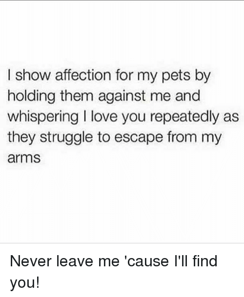 Ill Find You: I show affection for my pets by  holding them against me and  whispering I love you repeatedly as  they struggle to escape from my  arms Never leave me 'cause I'll find you!