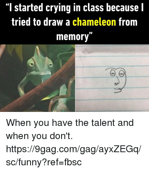 """9gag, Crying, and Dank: """"I started crying in class because l  tried to draw a chameleon from  memory"""" When you have the talent and when you don't.  https://9gag.com/gag/ayxZEGq/sc/funny?ref=fbsc"""