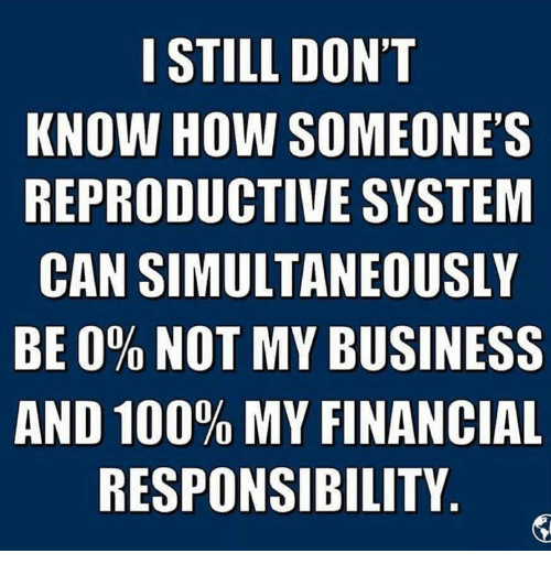 Memes, Responsibility, and 🤖: I STILL DON'T  KNOW HOW SOMEONE'S  REPRODUCTIVE SYSTEM  CAN SIMULTANEOUSLY  BE 0% NOT MY BUSINESS  AND 100% MY FINANCIAL  RESPONSIBILITY
