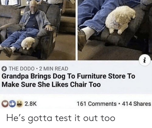 Furniture: i  THE DODO 2 MIN READ  Grandpa Brings Dog To Furniture Store To  Make Sure She Likes Chair Too  161 Comments 414 Shares  2.8K He's gotta test it out too
