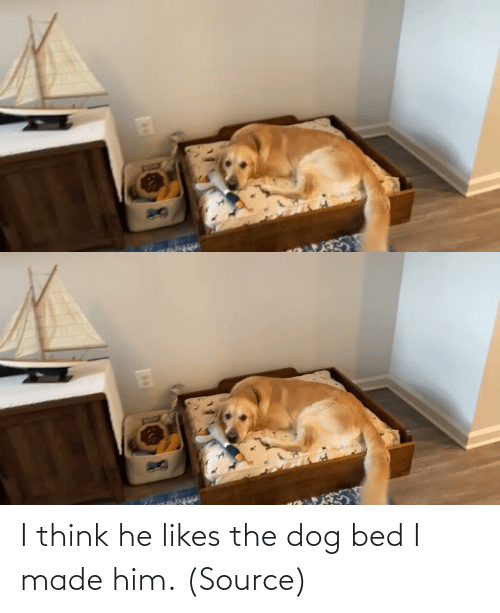 bed: I think he likes the dog bed I made him. (Source)
