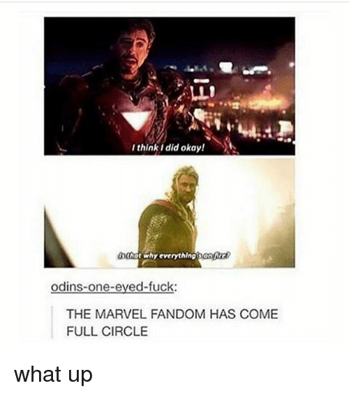 Memes, Thot, and Fuck: I think i did okay!  thot why everythingsonc  odins-one-eved-fuck:  THE MARVEL FANDOM HAS COME  FULL CIRCLE what up
