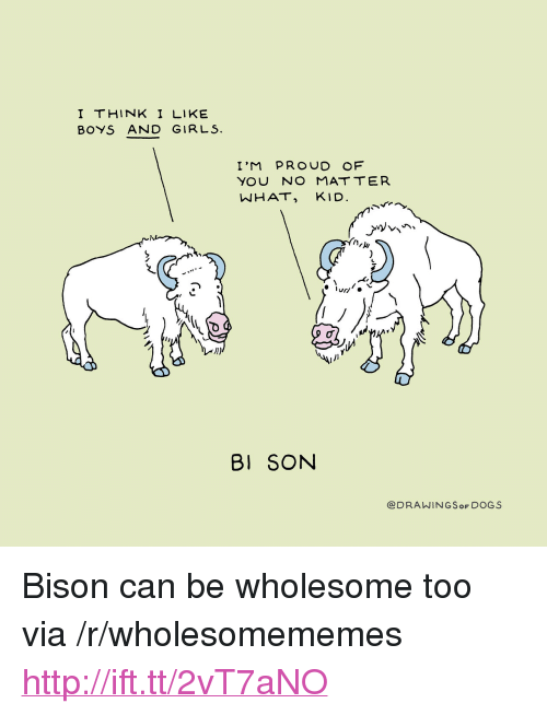 """bison: I THINK I LIKE  BOYS AND GIRLS.  I'M PROUD OF  NHAT, KID  1)  BI SON  @DRAWINGSoF DOGS <p>Bison can be wholesome too via /r/wholesomememes <a href=""""http://ift.tt/2vT7aNO"""">http://ift.tt/2vT7aNO</a></p>"""