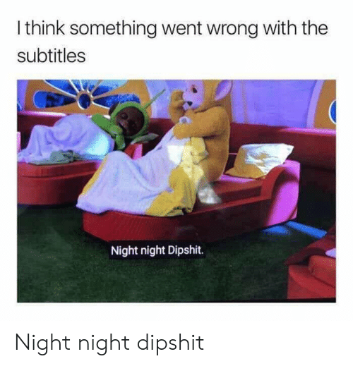 night night: I think something went wrong with the  subtitles  Night night Dipshit. Night night dipshit