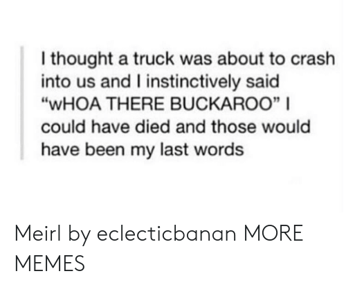 """Last Words: I thought a truck was about to crash  into us and I instinctively said  """"WHOA THERE BUCKAROO""""    could have died and those would  have been my last words Meirl by eclecticbanan MORE MEMES"""