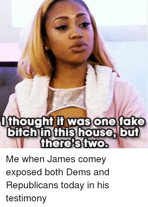 Bitch, Fake, and Memes: I thought it was one fake  bitch in this house, but  I there's two. Me when James comey exposed both Dems and Republicans today in his testimony
