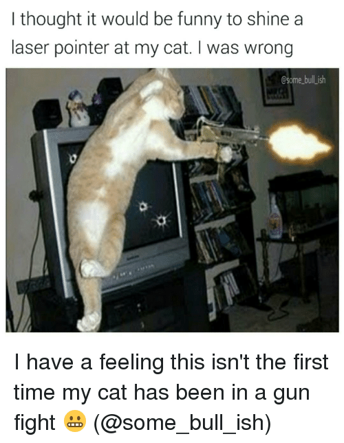 Memes, 🤖, and Laser: I thought it would be funny to shine a  laser pointer at my cat. I was wrong  Osome bull ish I have a feeling this isn't the first time my cat has been in a gun fight 😬 (@some_bull_ish)