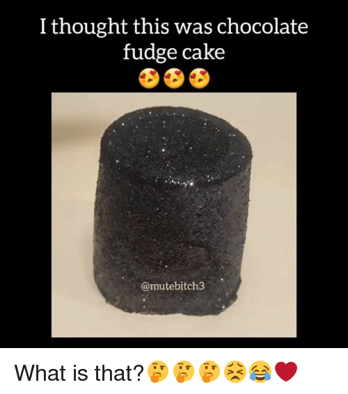 i thought this was chocolate fudge cake mutebitch3 what is 30642669 oh fudge fudge meme on sizzle