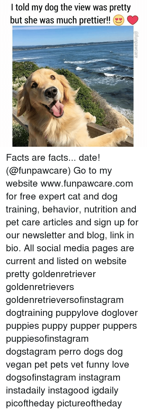Dogs, Facts, and Funny: I told my dog the view was pretty  but she was much prettier!! Facts are facts... date! (@funpawcare) Go to my website www.funpawcare.com for free expert cat and dog training, behavior, nutrition and pet care articles and sign up for our newsletter and blog, link in bio. All social media pages are current and listed on website pretty goldenretriever goldenretrievers goldenretrieversofinstagram dogtraining puppylove doglover puppies puppy pupper puppers puppiesofinstagram dogstagram perro dogs dog vegan pet pets vet funny love dogsofinstagram instagram instadaily instagood igdaily picoftheday pictureoftheday