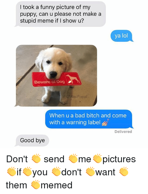 Bad, Bad Bitch, and Bitch: I took a funny picture of my  puppy, can u please not make a  stupid meme if I show u?  ya lol  Beware of Dog  @MasiPopal  When u a bad bitch and come  with a warning label  Delivered  Good bye Don't 👏 send 👏me👏pictures👏if👏you 👏don't 👏want 👏them 👏memed