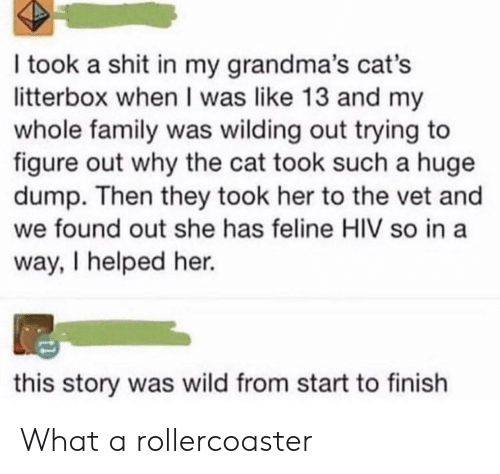 They Took: I took a shit in my grandma's cat's  litterbox when I was like 13 and my  whole family was wilding out trying to  figure out why the cat took such a huge  dump. Then they took her to the vet and  we found out she has feline HIV so in a  way, I helped her.  this story was wild from start to finish What a rollercoaster