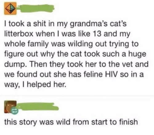 They Took: I took a shit in my grandma's cat's  litterbox when I was like 13 and my  whole family was wilding out trying to  figure out why the cat took such a huge  dump. Then they took her to the vet and  we found out she has feline HIV so in a  way, I helped her.  this story was wild from start to finish