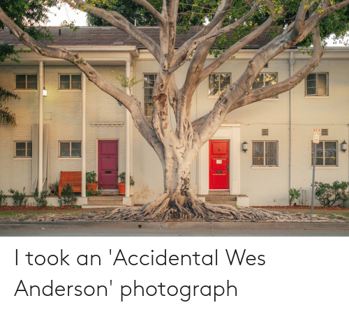 Wes: I took an 'Accidental Wes Anderson' photograph