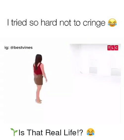 I Tried So Hard: I tried so hard not to cringe  TLC  ig: a bestvines ⠀ 🌱Is That Real Life!? 😂