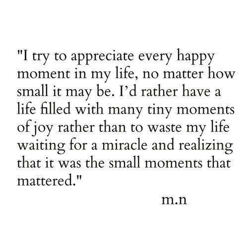 "I Try: ""I try to appreciate every happy  moment in my life, no matter how  small it may be. I'd rather have  life filled with many tiny moments  of joy rather than to waste my life  waiting for a miracle and realizing  that it was the small moments that  mattered.""  m.n"