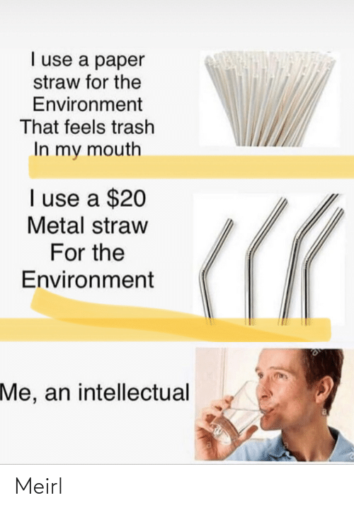 intellectual: I use a paper  straw for the  Environment  That feels trash  In my mouth  I use a $20  Metal straw  For the  Environment  Me, an intellectual Meirl