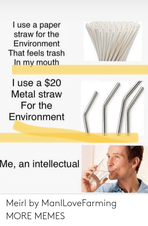 intellectual: I use a paper  straw for the  Environment  That feels trash  In my mouth  I use a $20  Metal straw  For the  Environment  Me, an intellectual Meirl by ManILoveFarming MORE MEMES