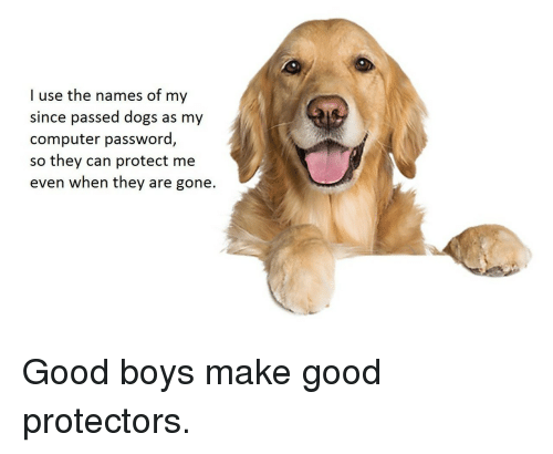 names of: I use the names of my  since passed dogs as my  computer password,  so  they can protect me  even when they are gone. <p>Good boys make good protectors.</p>