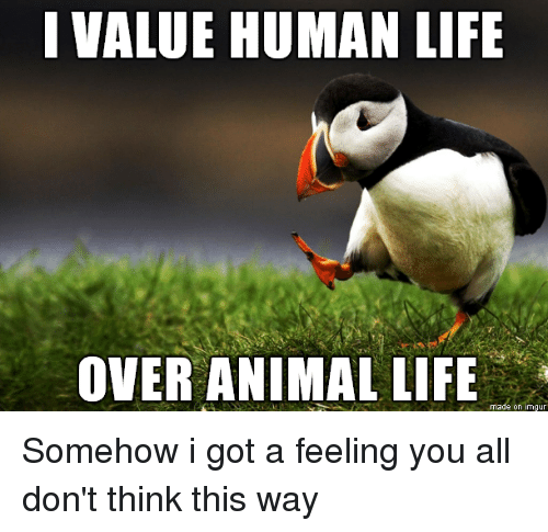 is an animals life worth a How much is a dog's life worth less than a human life,  diseases are jumping from birds, bats, monkeys, and other animals to the human population.