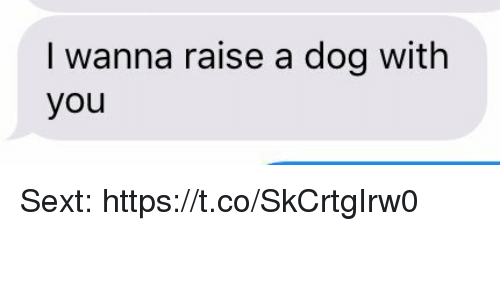Girl Memes, Dog, and You: I wanna raise a dog with  you Sext: https://t.co/SkCrtgIrw0