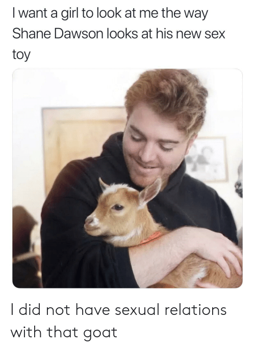 Sex, Goat, and Girl: I want a girl to look at me the way  Shane Dawson looks at his new sex  toy I did not have sexual relations with that goat
