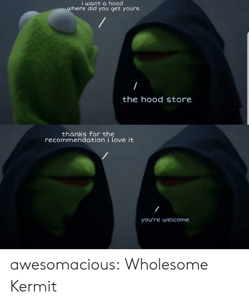 A Hood: i want a hood  where did you get yours  the hood store  thanks for the  recommendation i love it  you're welcome awesomacious:  Wholesome Kermit