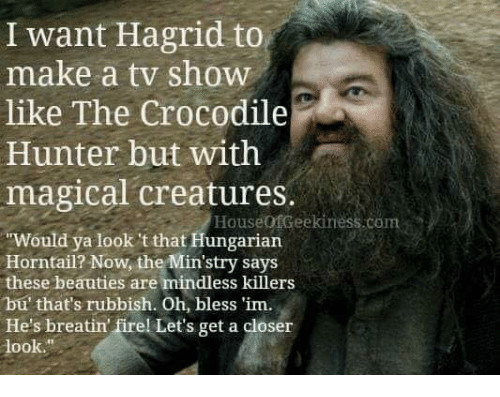 rubbish: I want Hagrid to  like The Crocodile  magical creatures.  make a tv show  Hunter but with  HouseofGeekiness.com  Would ya look 't that Hungarian  Horntail? Now, the Min'stry says  these beauties are mindless killers  bu' that's rubbish. Oh, bless 'im.  He's breatin firel Let's get a closer  look.""