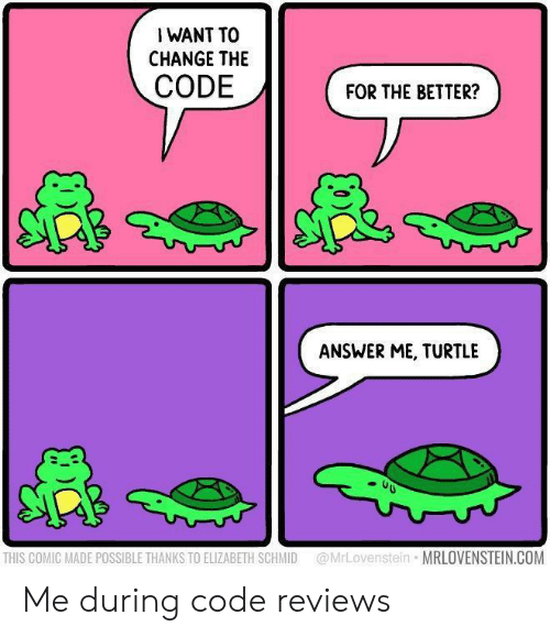elizabeth: I WANT TO  CHANGE THE  CODE  FOR THE BETTER?  ANSWER ME, TURTLE  @MrLovenstein MRLOVENSTEIN.COM  THIS COMIC MADE POSSIBLE THANKS TO ELIZABETH SCHMID Me during code reviews