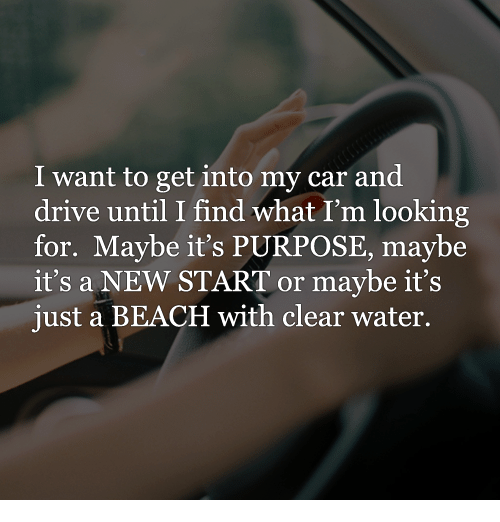 clear water: I want to get into my car and  drive until I find what I'm looking  for. Maybe it's PURPOSE, may be  it's a NEW START or maybe it's  just a BEACH with clear water.