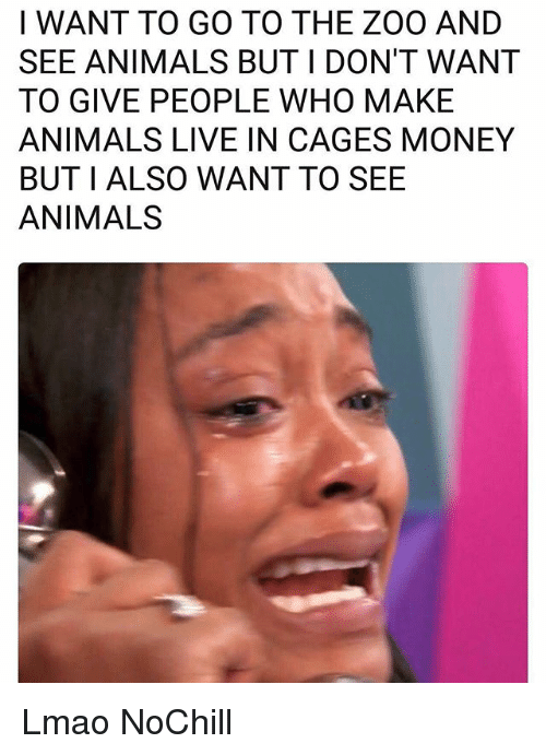 Animals, Funny, and Lmao: I WANT TO GO TO THE ZOO AND  SEE ANIMALS BUT I DON'T WANT  TO GIVE PEOPLE WHO MAKE  ANIMALS LIVE IN CAGES MONEY  BUT I ALSO WANT TO SEE  ANIMALS Lmao NoChill