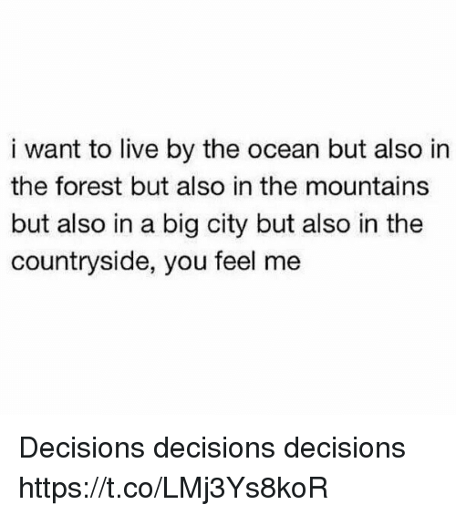 Live, Ocean, and Girl Memes: i want to live by the ocean but also in  the forest but also in the mountains  but also in a big city but also in the  countryside, you feel me Decisions decisions decisions https://t.co/LMj3Ys8koR