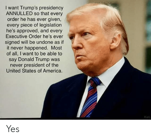 executive order: I want Trump's presidency  ANNULLED so that every  order he has ever given,  every piece of legislation  he's approved, and every  Executive Order he's ever  signed will be undone as if  it never happened. Most  of all, I want to be able to  say Donald Trump was  never president of the  United States of America.  Kall Yes