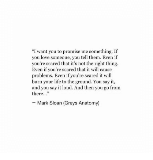 """Grey's Anatomy: """"I want you to promise me something. If  you love someone, you tell them. Even if  you're scared that it's not the right thing  Even if you're scared that it will cause  problems. Even if you're scared it will  burn your life to the ground. You say it,  and you say it loud. And then you go from  there""""  Mark Sloan (Greys Anatomy)"""