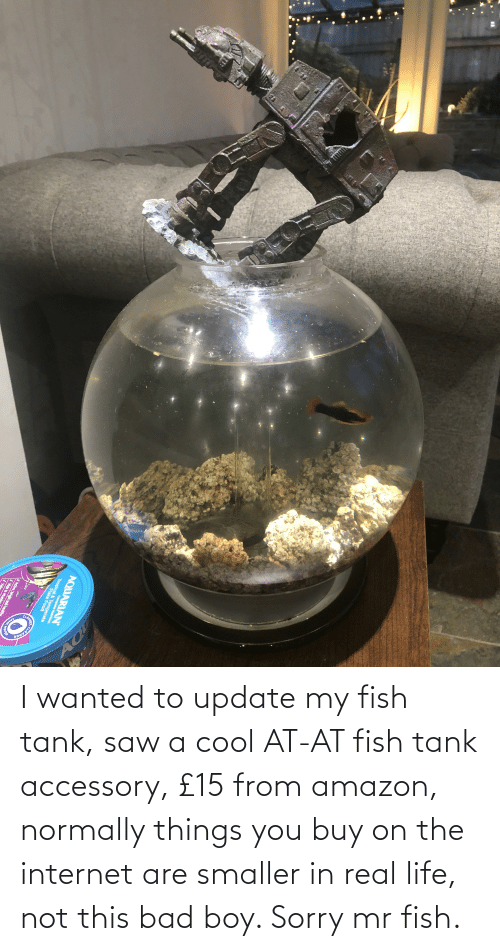 AT-AT: I wanted to update my fish tank, saw a cool AT-AT fish tank accessory, £15 from amazon, normally things you buy on the internet are smaller in real life, not this bad boy. Sorry mr fish.