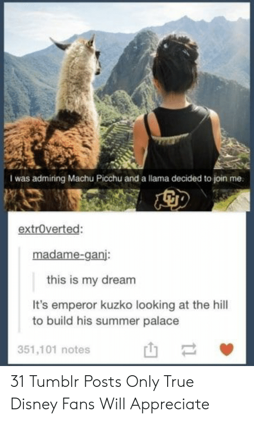 llama: I was admiring Machu Picchu and a llama decided to join me.  extroverted:  madame-ganj:  this is my dream  It's emperor kuzko looking at the hill  to build his summer palace  351,101 notes  t1 31 Tumblr Posts Only True Disney Fans Will Appreciate