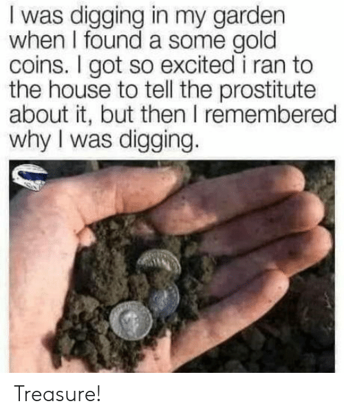prostitute: I was digging in my garden  when I found a some gold  coins. I got so excited i ran to  the house to tell the prostitute  about it, but then I remembered  why I was digging. Treasure!