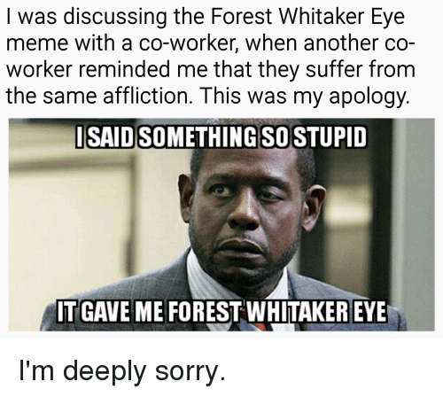Forest Whitaker, Meme, and Reddit: I was discussing the Forest Whitaker Eye  meme with a co-worker, when another co-  worker reminded me that they suffer from  the same affliction. This was my apology  ISAID SOMETHING SO STUPID  IT GAVE ME FOREST WHITAKER EYE