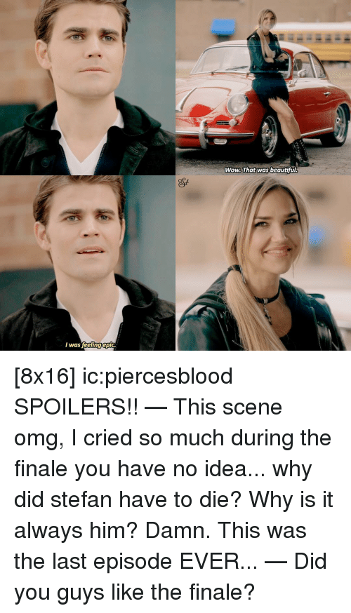 Memes, 🤖, and Epic: I was feeling epic  Wow. That was beautiful. [8x16] ic:piercesblood SPOILERS!! — This scene omg, I cried so much during the finale you have no idea... why did stefan have to die? Why is it always him? Damn. This was the last episode EVER... — Did you guys like the finale?