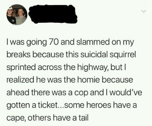cape: I was going 70 and slammed on my  breaks because this suicidal squirrel  sprinted across the highway, but I  realized he was the homie because  ahead there was a cop and I would 've  gotten a ticket...some heroes have a  cape, others have a tail