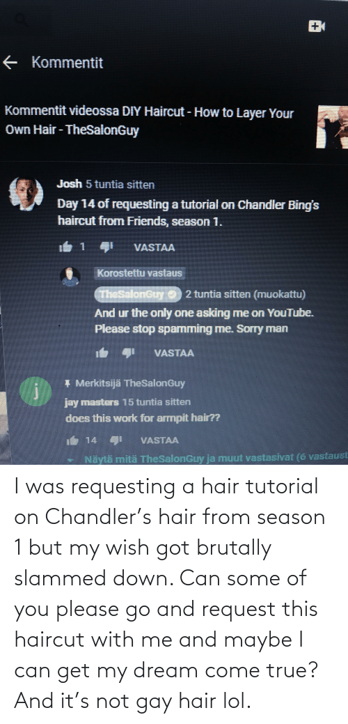 Haircut: I was requesting a hair tutorial on Chandler's hair from season 1 but my wish got brutally slammed down. Can some of you please go and request this haircut with me and maybe I can get my dream come true? And it's not gay hair lol.