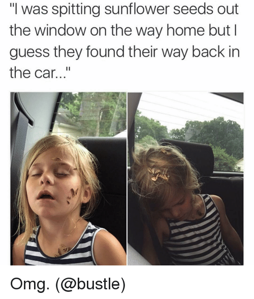 "Sunflowering: ""I was spitting sunflower seeds out  the window on the way home but I  guess they found their way back in  the car Omg. (@bustle)"