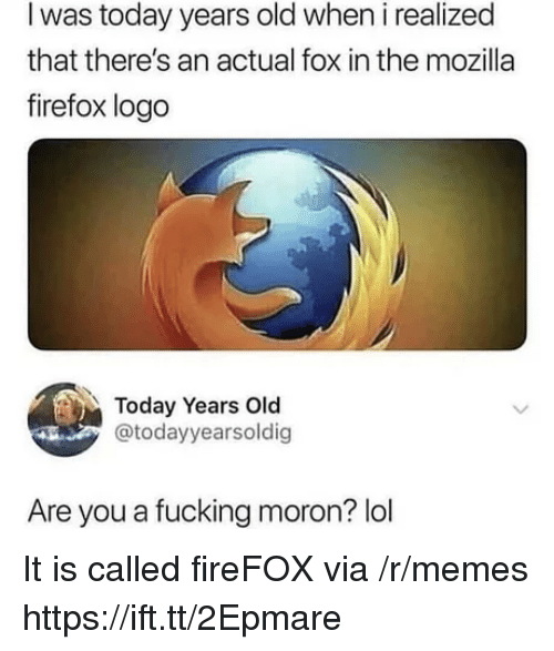 Firefox: I was today years old when i realized  that there's an actual fox in the mozilla  firefox logo  Today Years Old  @todayyearsoldig  Are you a fucking moron? lol It is called fireFOX via /r/memes https://ift.tt/2Epmare