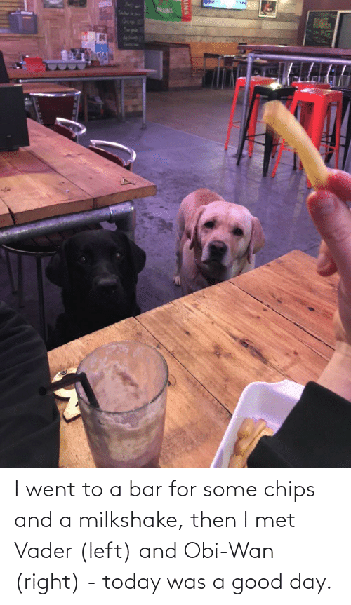 today was a good day: I went to a bar for some chips and a milkshake, then I met Vader (left) and Obi-Wan (right) - today was a good day.