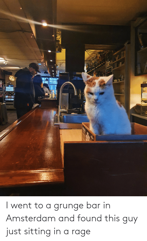 bar: I went to a grunge bar in Amsterdam and found this guy just sitting in a rage