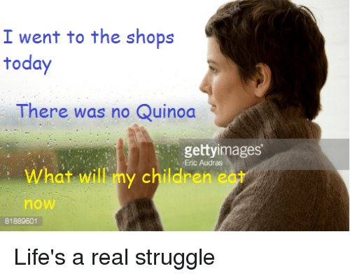 Funny Memes About Life Struggles: 42 Funny Quinoa Memes Of 2016 On SIZZLE