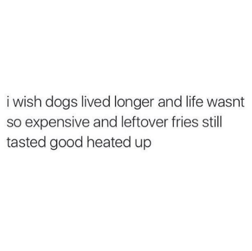 Dank, Dogs, and Life: i wish dogs lived longer and life wasnt  so expensive and leftover fries still  tasted good heated up