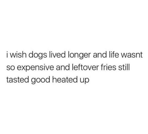 Heated: i wish dogs lived longer and life wasnt  so expensive and leftover fries still  tasted good heated up