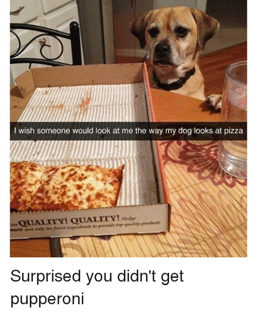 Funny,  the Way, and I Wish: I wish someone would look at me the way my dog looks at pizza  uses only the finest ingredients to provide quality products Surprised you didn't get pupperoni